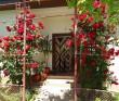 Casa Ghemus