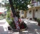 Casa de vacanta Alexoiu 2 Mai