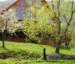 Casa de vacanta Carpathian Log Bran