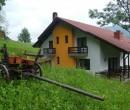 Pensiunea Poiana Verde Slanic Moldova